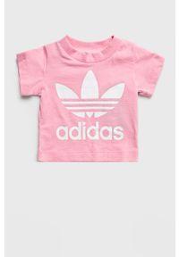Różowa bluzka z krótkim rękawem adidas Originals z nadrukiem, casualowa