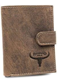 BUFFALO WILD - Portfel męski brązowy Buffalo Wild RM-07L-HBW BROWN. Kolor: brązowy. Materiał: skóra