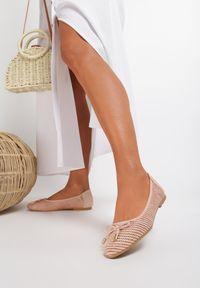 Renee - Różowe Balerinki Anaviane. Nosek buta: okrągły. Kolor: różowy. Materiał: koronka. Szerokość cholewki: normalna. Wzór: aplikacja