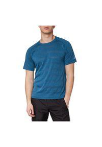Pro Touch - Koszulka męska do biegania PRO TOUCH Afi 285847. Materiał: poliester, materiał, tkanina, bawełna. Długość rękawa: raglanowy rękaw. Długość: długie. Sport: bieganie, fitness
