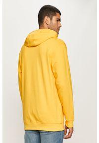 Żółta bluza nierozpinana Vans z kapturem, z nadrukiem