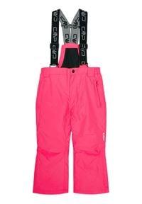 CMP Spodnie narciarskie 3W15994 Różowy Regular Fit. Kolor: różowy. Sport: narciarstwo