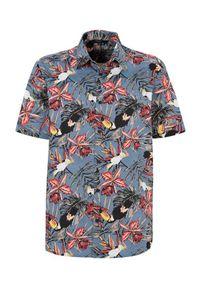 Cellbes Koszula szaroniebieski we wzory male szary/niebieski/ze wzorem 6XL. Kolor: niebieski, wielokolorowy, szary. Długość rękawa: krótki rękaw. Długość: krótkie