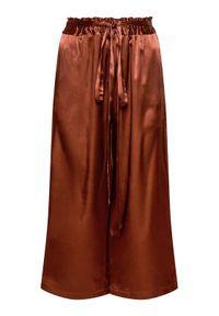 Pinko Kuloty Anima Fragile 20211 PSPG 1N135H 8521 Brązowy Regular Fit. Kolor: brązowy