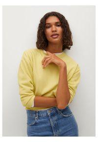 Żółty sweter klasyczny mango