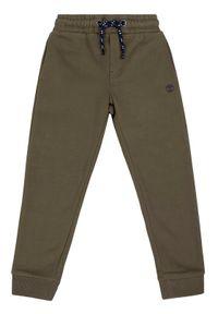 Zielone spodnie dresowe Timberland