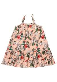 TwinSet Sukienka codzienna 201GB2333 M Kolorowy Regular Fit. Okazja: na co dzień. Wzór: kolorowy. Typ sukienki: proste. Styl: casual