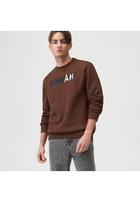 Sinsay - Bluza z nadrukiem - Brązowy. Kolor: brązowy. Wzór: nadruk