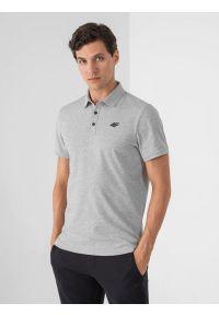 4f - Koszulka polo regular męska. Okazja: na co dzień. Typ kołnierza: polo. Kolor: szary. Materiał: dzianina, materiał. Styl: casual