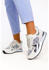 Casu - Szare sneakersy na platformie buty sportowe sznurowane casu 8211-3. Kolor: srebrny, wielokolorowy, szary. Obcas: na platformie