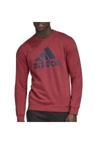Adidas - ADIDAS FAVORITES GRAPHIC CREW > GJ6592. Materiał: poliester, materiał, bawełna. Styl: klasyczny, sportowy