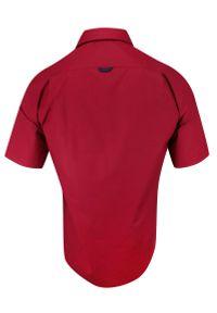 Czerwona elegancka koszula Rigon krótka, do pracy, z krótkim rękawem