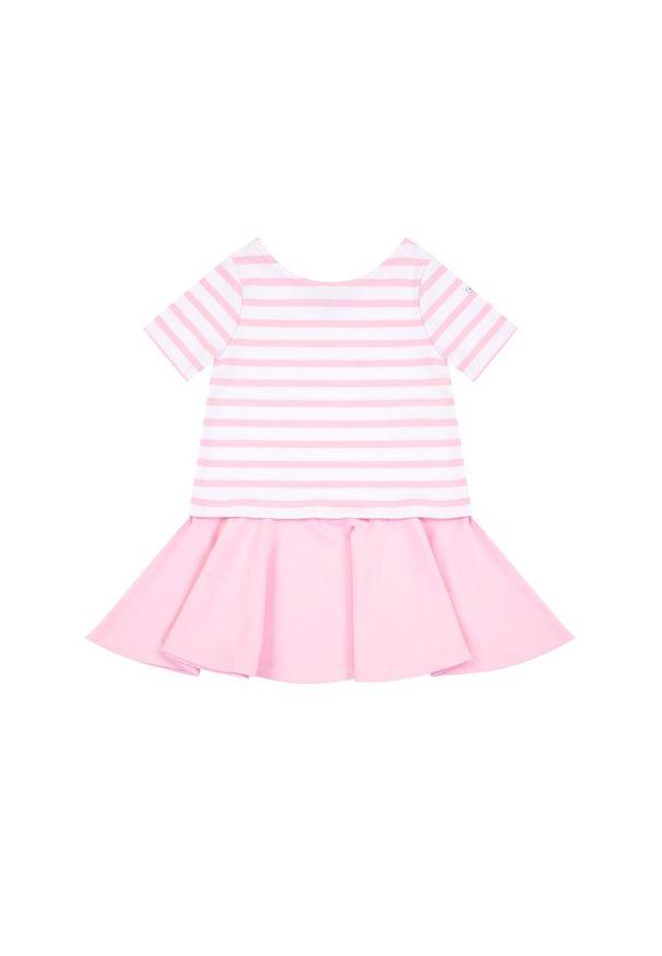Różowa sukienka Polo Ralph Lauren prosta, na co dzień, casualowa, polo
