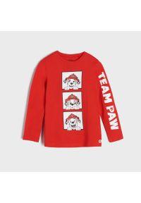 Sinsay - Koszulka Psi Patrol - Czerwony. Kolor: czerwony