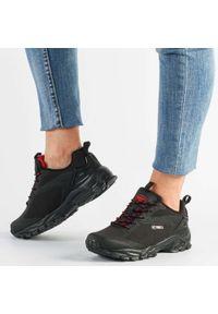 American Club - Czarne buty trekkingowe AMERICAN HL18/21 RD. Kolor: czarny. Materiał: tkanina, skóra. Szerokość cholewki: normalna. Obcas: na obcasie. Styl: klasyczny. Wysokość obcasa: średni