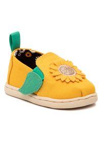 Toms Półbuty Alpargata Twin Gore 10016445 Żółty. Kolor: żółty
