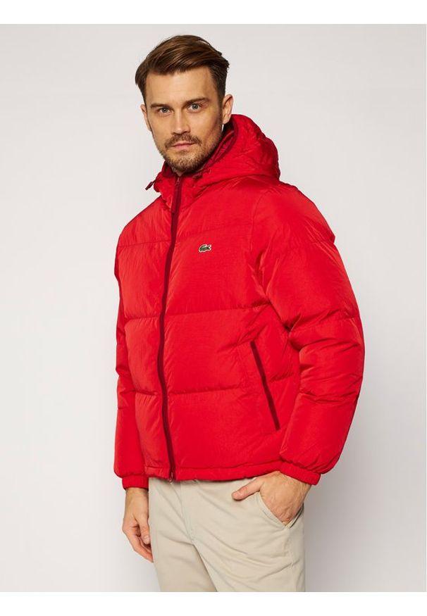 Czerwona kurtka puchowa Lacoste