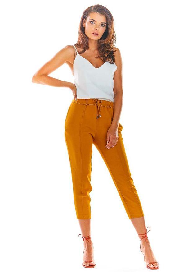 Spodnie z wysokim stanem Awama eleganckie