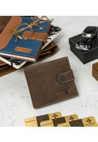 BUFFALO WILD - Skórzany męski portfel brązowy Buffalo Wild RM-01L-HBW BROWN. Kolor: brązowy. Materiał: skóra