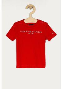 Czerwony t-shirt TOMMY HILFIGER casualowy, z nadrukiem, na co dzień