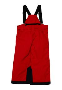 Reima Spodnie narciarskie Wingon 532185 Czerwony Regular Fit. Kolor: czerwony. Sport: narciarstwo #2
