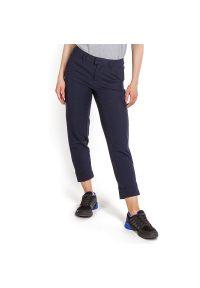 Niebieskie spodnie The North Face