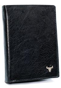 BUFFALO WILD - Portfel męski czarny Buffalo Wild N104-BW BLACK. Kolor: czarny. Materiał: skóra