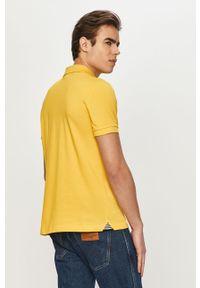 Żółta koszulka polo Geox na co dzień, casualowa, polo, krótka #5