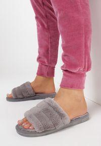 Born2be - Szare Kapcie Vanillas. Nosek buta: okrągły. Zapięcie: bez zapięcia. Kolor: szary. Materiał: futro. Wzór: aplikacja