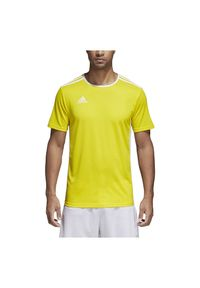 Adidas - Koszulka adidas Entra Jr CD8390. Materiał: materiał. Technologia: ClimaLite (Adidas). Sport: fitness, piłka nożna