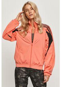 Pomarańczowa bluza rozpinana adidas Originals na co dzień, raglanowy rękaw