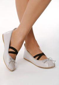 Born2be - Szare Balerinki Ostin. Nosek buta: okrągły. Zapięcie: bez zapięcia. Kolor: szary. Materiał: skóra. Wzór: gładki. Styl: klasyczny