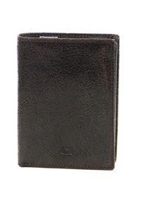 Brązowy portfel DAAG