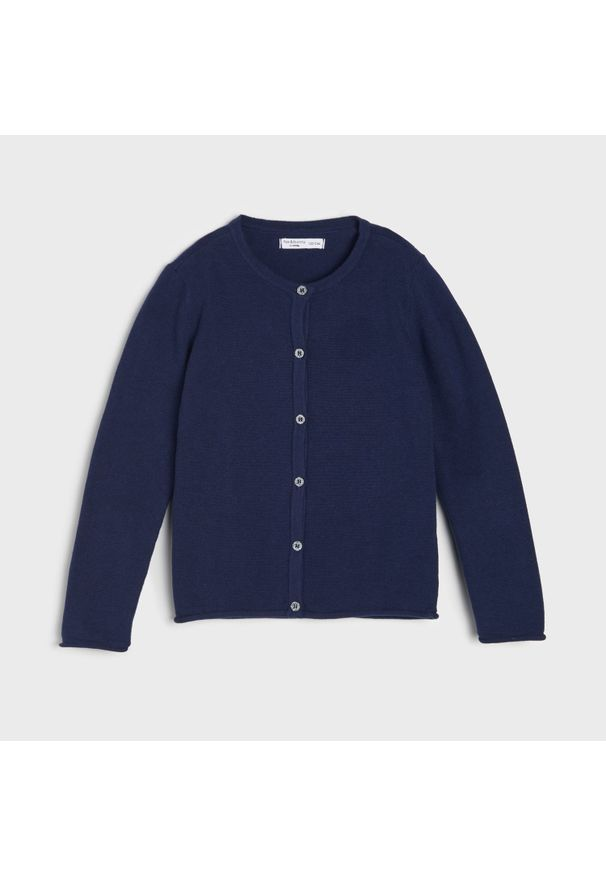 Niebieski sweter Sinsay