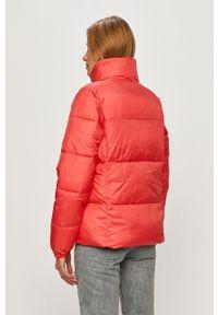 Pomarańczowa kurtka columbia bez kaptura, na co dzień, casualowa