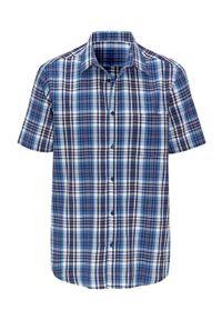 Koszula Cellbes krótka, z krótkim rękawem, elegancka, w kratkę