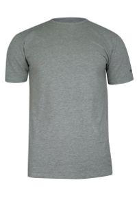 Pako Jeans - T-shirt Popielaty Gładki Bawełniany, Męski, Krótki Rękaw, U-neck -PAKO JEANS. Okazja: na co dzień. Kolor: szary. Materiał: bawełna, elastan. Długość rękawa: krótki rękaw. Długość: krótkie. Wzór: gładki. Styl: casual
