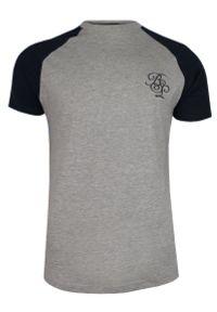 Szaro-Czarny Bawełniany T-Shirt Męski -Brave Soul- Koszulka, Krótki Rękaw, Logo. Okazja: na co dzień. Kolor: wielokolorowy, szary, czarny. Materiał: wiskoza, bawełna. Długość rękawa: krótki rękaw. Długość: krótkie. Wzór: napisy, nadruk. Sezon: wiosna, lato. Styl: casual
