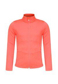 Poivre Blanc - Bluza POIVRE BLANC. Typ kołnierza: kołnierzyk stójkowy. Materiał: tkanina. Styl: sportowy