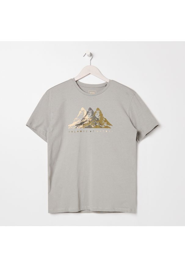 Sinsay - Koszulka z nadrukiem ECO AWARE - Jasny szary. Kolor: szary. Wzór: nadruk