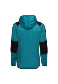 Bluza polarowa damska Viking Alpine 730204335. Typ kołnierza: kaptur. Materiał: polar
