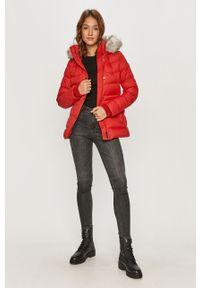 Czerwona kurtka TOMMY HILFIGER z kapturem, na co dzień, casualowa #6