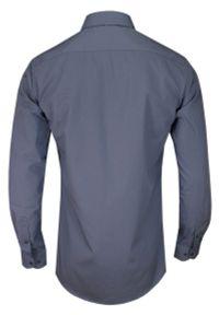 Chiao - Popielata Elegancka Koszula Męska z Długim Rękawem, 100% Bawełna -CHIAO- Taliowana. Okazja: do pracy, na spotkanie biznesowe. Kolor: szary. Materiał: bawełna. Długość rękawa: długi rękaw. Długość: długie. Wzór: aplikacja. Styl: elegancki