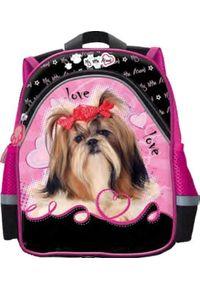 St. Majewski Plecak Dziecięcy My Little Friend Shih Tzu czarno-różowy (SZ-43189). Kolor: wielokolorowy, różowy, czarny