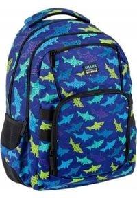 Starpak Plecak szkolny Shark niebieski. Kolor: niebieski
