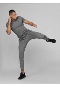 4f - Spodnie treningowe męskie. Kolor: szary. Materiał: dzianina. Sport: fitness