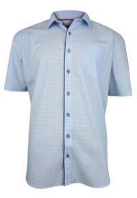Niebieska elegancka koszula Rey Jay z krótkim rękawem, w grochy