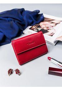 4U CAVALDI - Portfel damski czerwony Cavaldi RD-03-GCL RED. Kolor: czerwony. Materiał: skóra