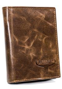 BUFFALO WILD - Portfel męski brązowy Buffalo Wild D1072-MVTB BROWN. Kolor: brązowy. Materiał: skóra