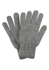 Szare rękawiczki Pako Jeans na zimę, eleganckie